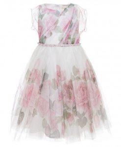 rose vendita online - Primi Desideri Albano Laziale 7eb8b1cd684